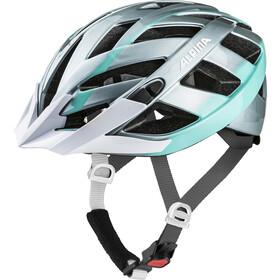Alpina Panoma 2.0 Cykelhjelm, steelgrey-smaragd
